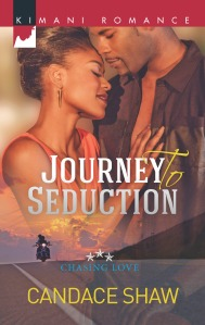Journey to Seduction Front Cover Only
